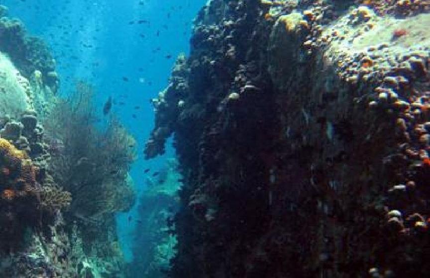 White Rock picture