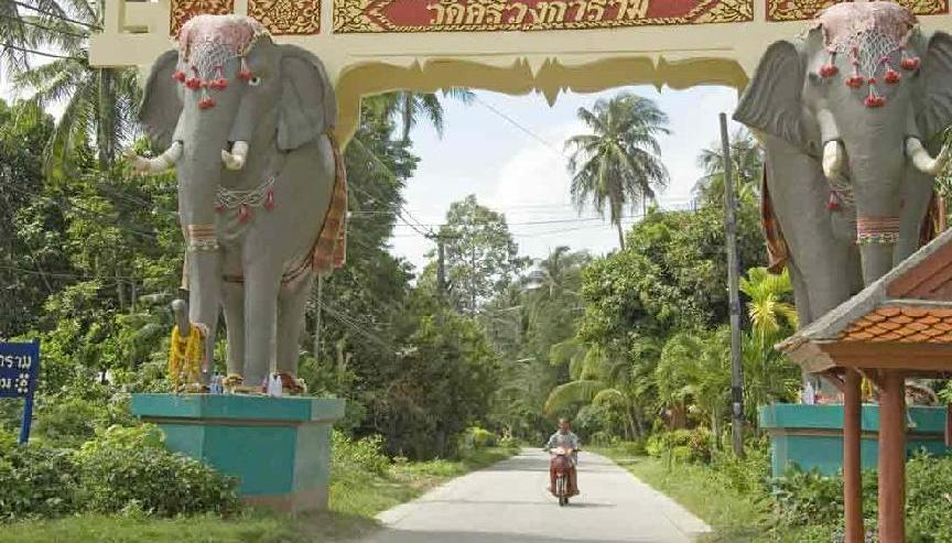 The Elephant Gate picture