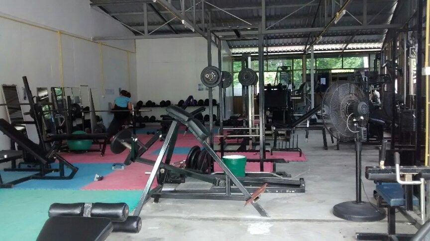 Jungle Gym picture
