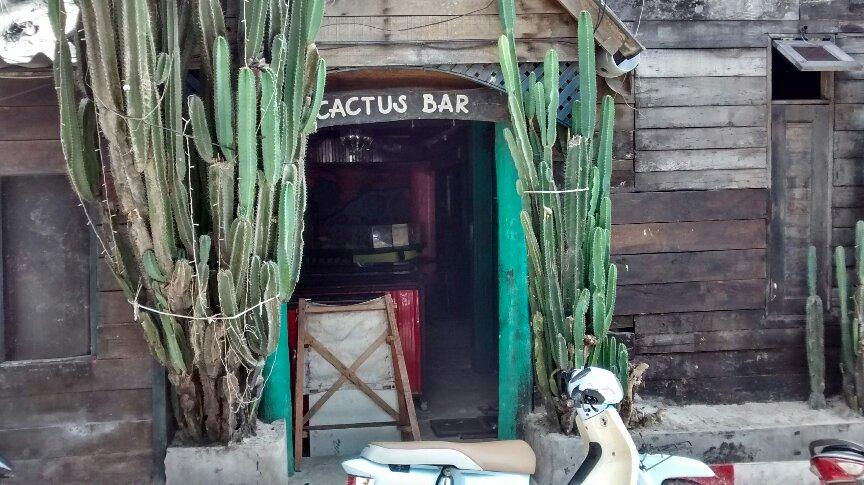Cactus Bar picture