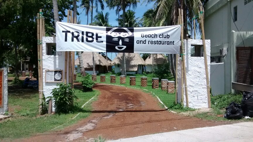 Tribe beach club and restaurant picture